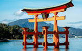 Torii, the sacred gates